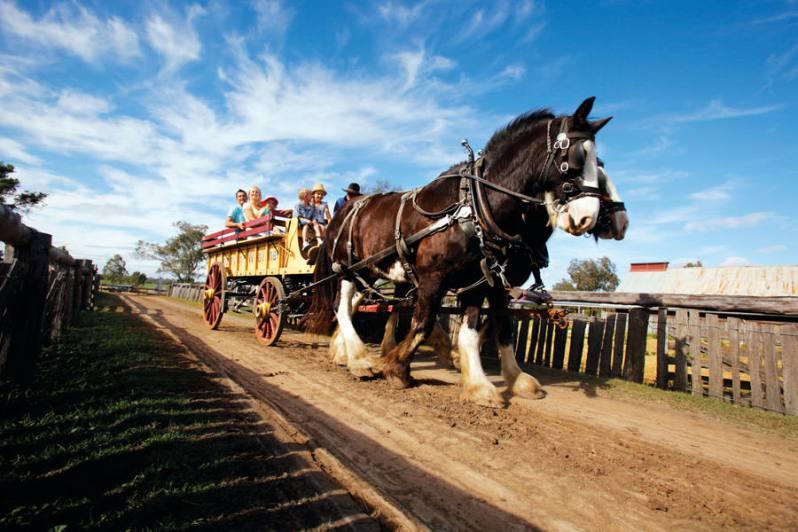Jondaryan Woolshed horse cart