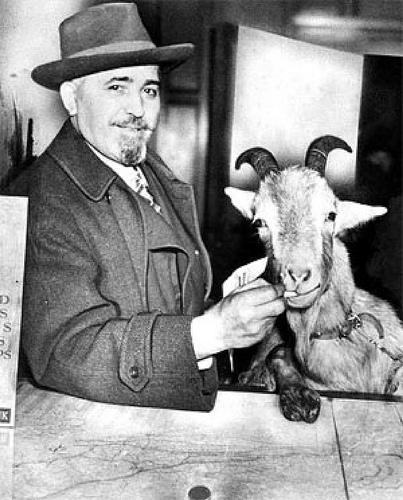 Portland Jinx (Billy Goat Curse II)