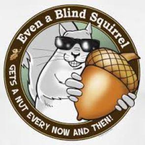 2016 NFL Draft - blind squirrel