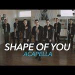 """Mike Tompkins   """"Shape Of You"""" cover (Ed Sheeran)"""