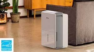 10 Best Dehumidifier for Basements of 2020 – Moisture Managed