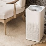 Top 10 Best Air Purifiers of 2017