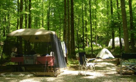 Top 10 Best Camping Screen Houses of 2016