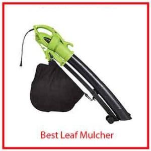 9) WGoplus 3-in-1 Electric Leaf Blower/Vacuum/Mulcher