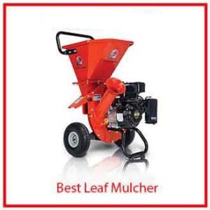 10) WGreatCircleUSA Wood Chipper Shredder Mulcher