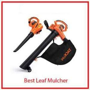 7) WTacklife 3 in 1 Vacuum, Blower and Mulcher