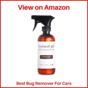 Dr.-Beasley's-Bug-Remover-for-cars