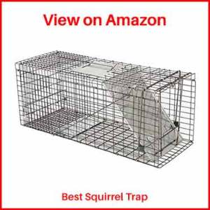Oteymart-Live squirrel-Trap