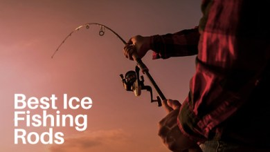 Photo of Best Ice Fishing Rods in 2020 Reviews/Buyers' Guide