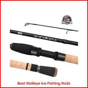 Cadence Spinning Walleye Ice Fishing Rods
