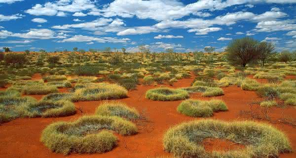 Deserto Arenoso