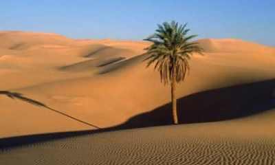 Top 10 maiores desertos do mundo