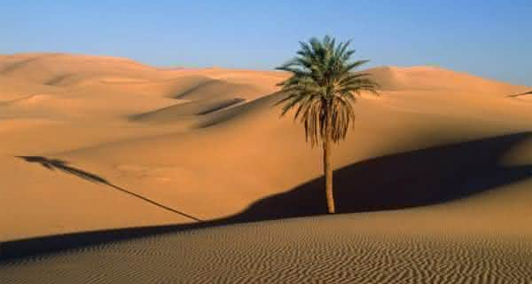 Deserto da Arabia