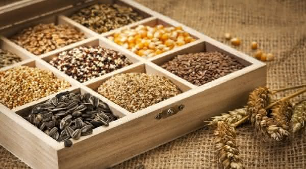dieta dukan entre as dietas mais usadas