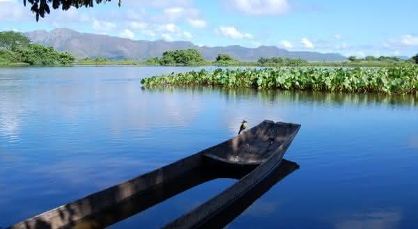 rio paraguai pantanal