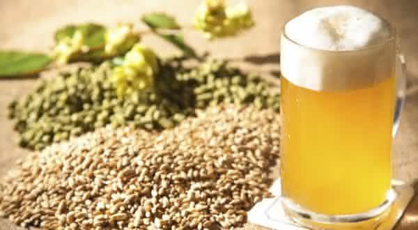 risco cancer um dos beneficios da cerveja