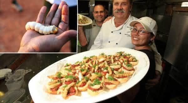 larvas entre os alimentos mais bizarros do mundo