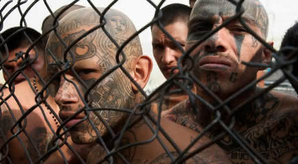 Mara Salvatrucha 13 (MS13) entre as organizacoes criminosas mais perigosas do mundo