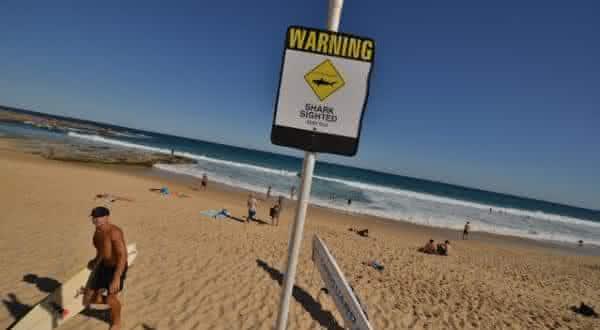 costa norte australiana entre as praias mais perigosas do mundo