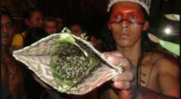 Formiga Cabo-Verde e Luvas entre as mais bizarras tradições no mundo