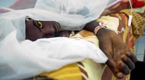 febre amarela entre as epidemias mais mortais da historia
