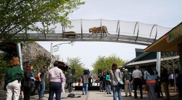 Philadelphia Zoo entre os melhores zoologicos do mundo