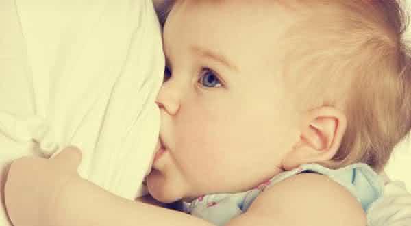 todas pode amamentar entre os mitos mais comuns na gravidez