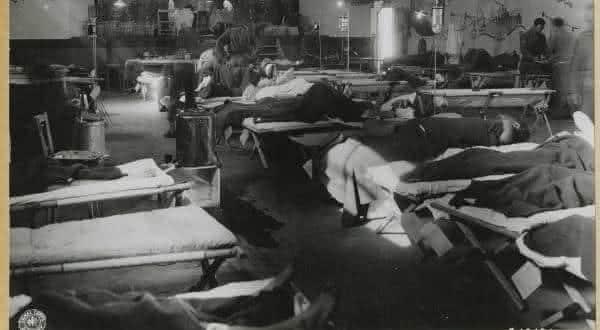 colecao judaica entre os chocantes experimentos nazistas