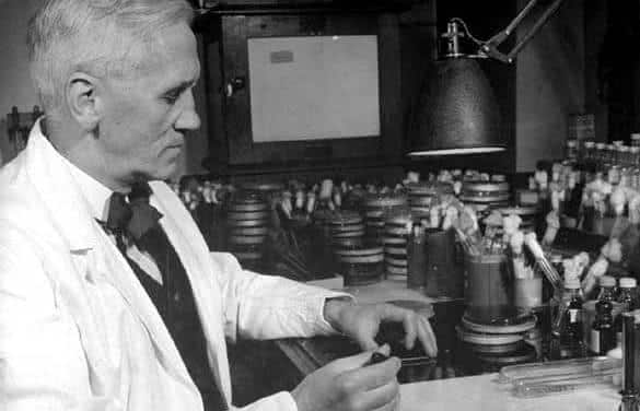 penicilina entre as maiores descobertas da medicina