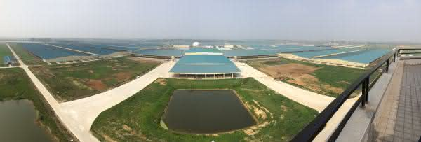 Mudanjiang City Mega Farm 2 entre as maiores fazendas do mundo