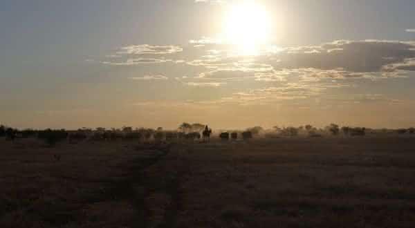 Wave Hill entre as maiores fazendas do mundo