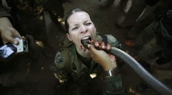 coquetel de cobra entre os exercicios militares extremos