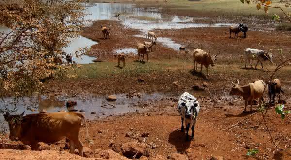 niger entre os paises com maiores medias de temperaturas