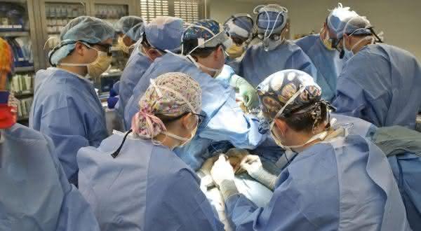 coração-pulmão entre os procedimentos médicos mais caros do mundo