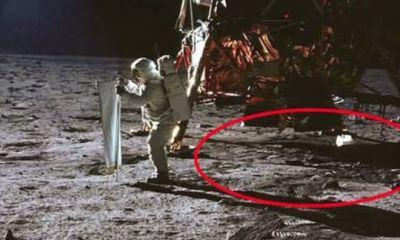sem cratera entre as razoes pelas quais a chegada do homem a lua e falsa