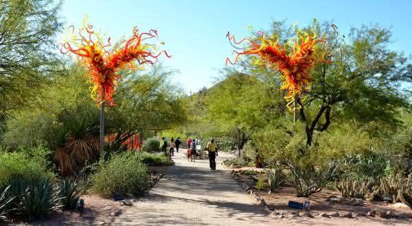 Desert Botanical Gardens 2 entre os jardins mais bonitos do mundo
