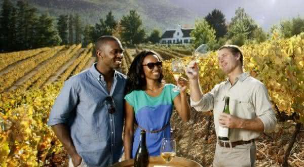 africa do sul entre os maiores exportadores de vinhos do mundo