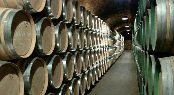 espanha entre os maiores exportadores de vinhos do mundo