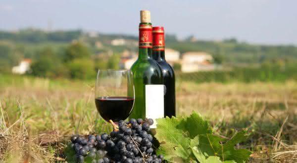 franca entre os maiores exportadores de vinhos do mundo