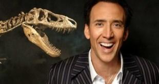 cranio de dinossauro entre as transacoes de cartao de credito mais caras do mundo
