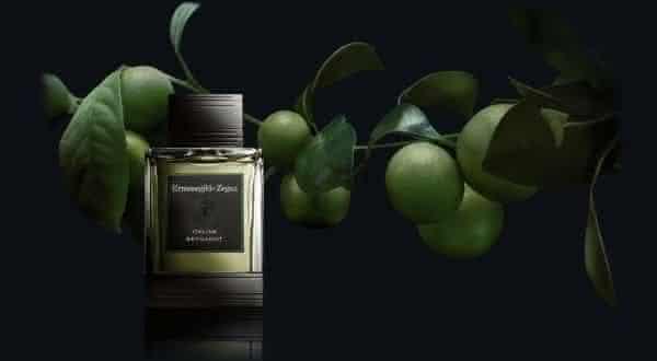Italian Bergamot Ermenegildo Zegna entre os melhores perfumes importados masculinos