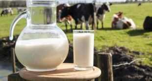 brasil entre os maiores paises produtores de leite do mundo