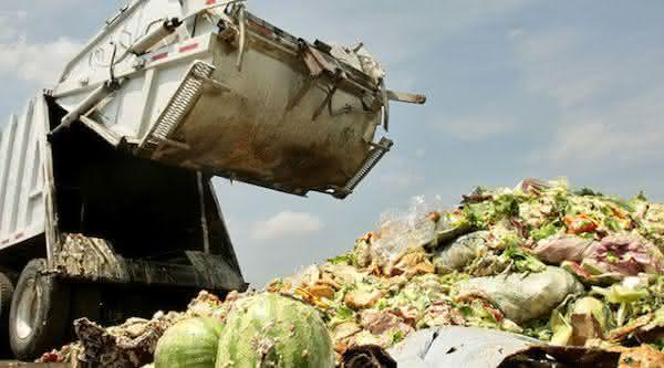 reino unido entre os paises com maior taxa de desperdicio de alimentos