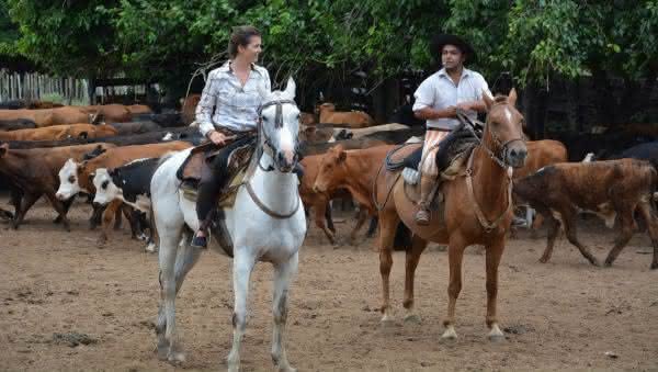 Argentina entre os paises com mais cavalos no mundo