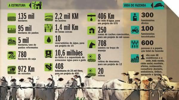 Top 10 maiores fazendas do Brasil 2