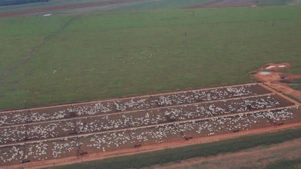 Fazenda Roncador entre as maiores fazendas do Brasil