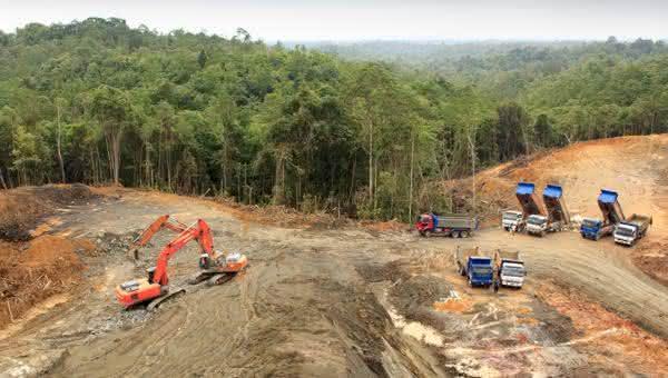 Paraguai entre os paises com maior taxa de desmatamento