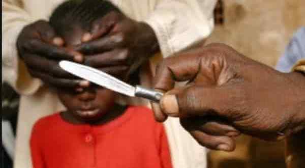 niger entre os paises com maior taxa de circuncisao do mundo