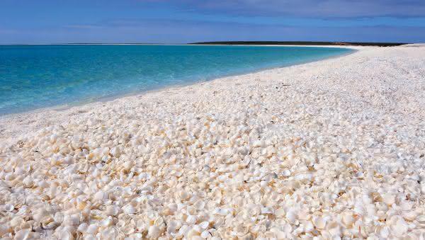 praia shell entre as praias mais bizarras do mundo