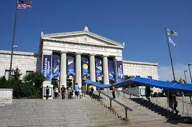 Shedd Aquarium  Top 10 mejores atracciones turísticas para visitar en Chicago.visitar chicago vacaciones en chicago los mejores hoteles de chicago atracciones turísticas para visitar en Chicago